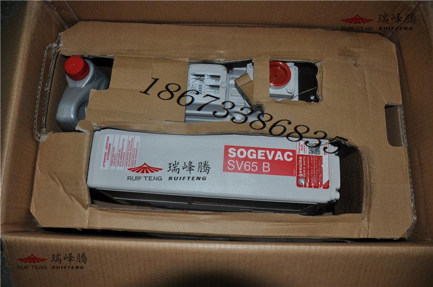 莱宝真空泵SV40B长沙专业维修瑞峰腾莱宝油雾分离器