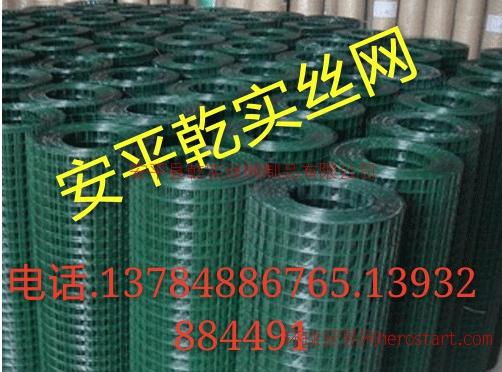 镀锌电批发镀锌电焊网价格镀锌电焊网供应商镀锌电焊网 浸塑荷兰网
