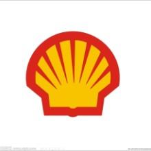 壳牌(Shell)轴承循环油ShellMorlinaS1B460批发