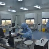 CCD 841 CoN复苏细胞系