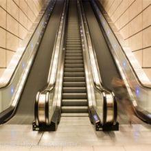 东莞市宝马电梯有限公司 东莞宝马电梯 汽车电梯公司 医用电梯厂家