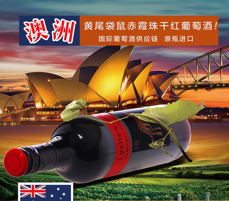澳洲黄尾袋鼠赤霞珠干红销售