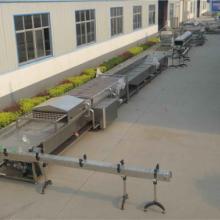 果蔬保鲜设备中央厨房酱菜加工流水线厂家批发