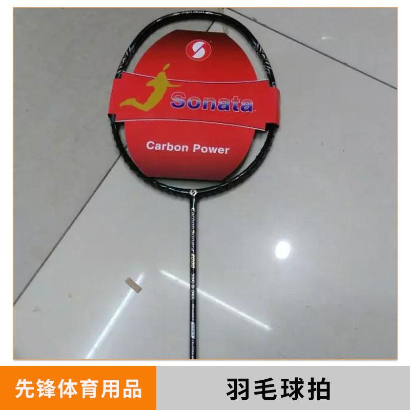 陕西羽毛球拍图片/陕西羽毛球拍样板图 (1)