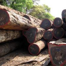 进口非洲木材所需要的单证木材进口报关批发