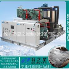 湖北黄冈化工制药厂降温片冰机 化工生物反应降温设备制冰机知名厂家