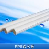 PPR厂家直销全新原料 云南PPR给水管 PPR家装管 绿色PPR管 PP-R给水管