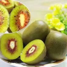贵州六盘水原产新鲜红心猕猴桃,海拔1108米盆地枝头新摘,口感不同于其他猕猴桃