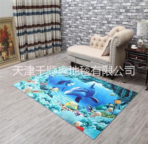 3D地毯进门入户地垫门垫卧室门厅 3D地毯厂家直销 3D地毯 3d儿童卡通地毯