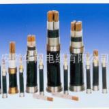 华网电缆JKVVP3◆补偿导线◆橡皮电缆◆上海特种电缆◆浙江特种电缆◆安徽特种电缆