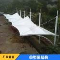 定制小区景观膜伞遮阳篷 伞型膜结构景观棚 张拉膜景观伞