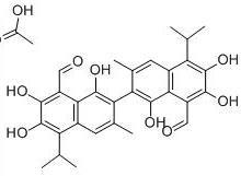 醋酸棉酚12542-36-8