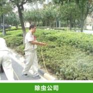 除虫公司服务图片