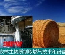 农林生物质_制取燃气技术和设备 农林生物质制取燃气技术和设备
