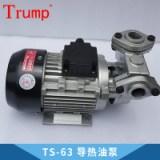 TS-63导热油泵 模温机抽油泵高温油泵 热水循环泵 厂家直销