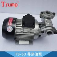 TS-63 导热油泵图片