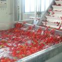 辣椒酱加工成套设备厂价直销图片