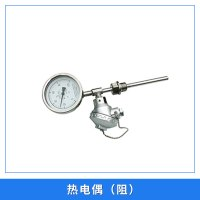 热电偶(阻)高温防腐热电偶热电阻 精密测量仪器感温探头 防腐