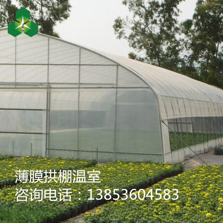 蔬菜简易拱棚温室大棚 单栋薄膜温室大棚骨架保质10年售后服务周到