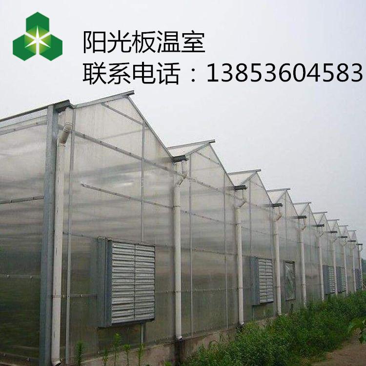青州阳光板温室的效果 连栋阳光板温室钢管大棚建造价格和材料是什么