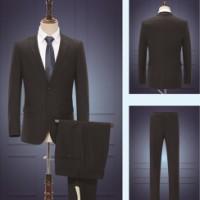 职业套装 男式职业套装