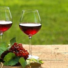 欧洲葡萄牙进口葡萄酒红酒原装原瓶批发图片