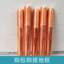 厂家直销 浙江铜包钢接地极 镀铜接地棒、铜覆钢接地极图片