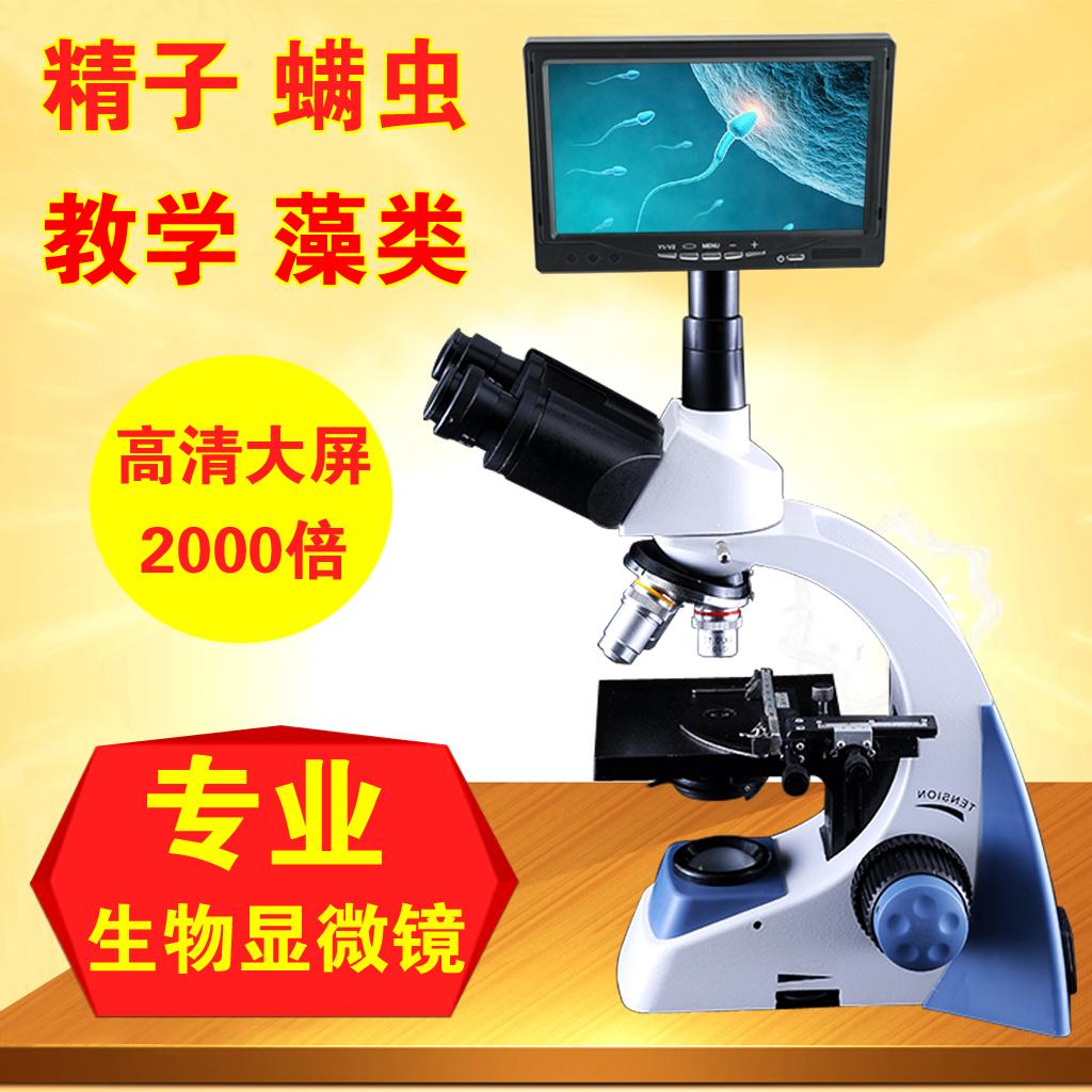数码显微镜 数码显微镜1600倍