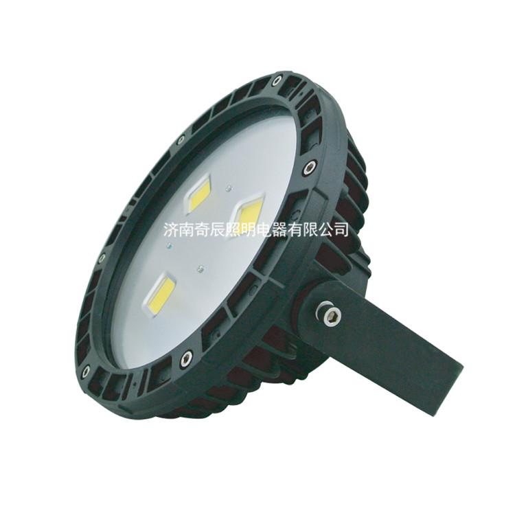 免维护LED泛光灯QC-FL015-B-I