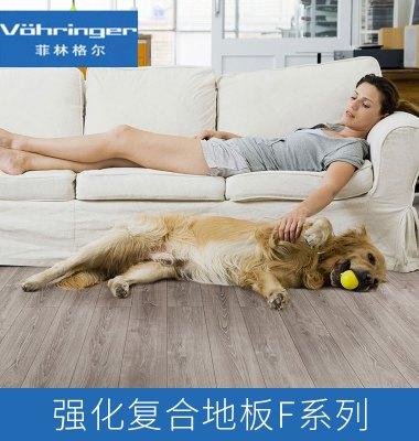 菲林格尔强化复合地板F系列产品图片/菲林格尔强化复合地板F系列产品样板图 (2)