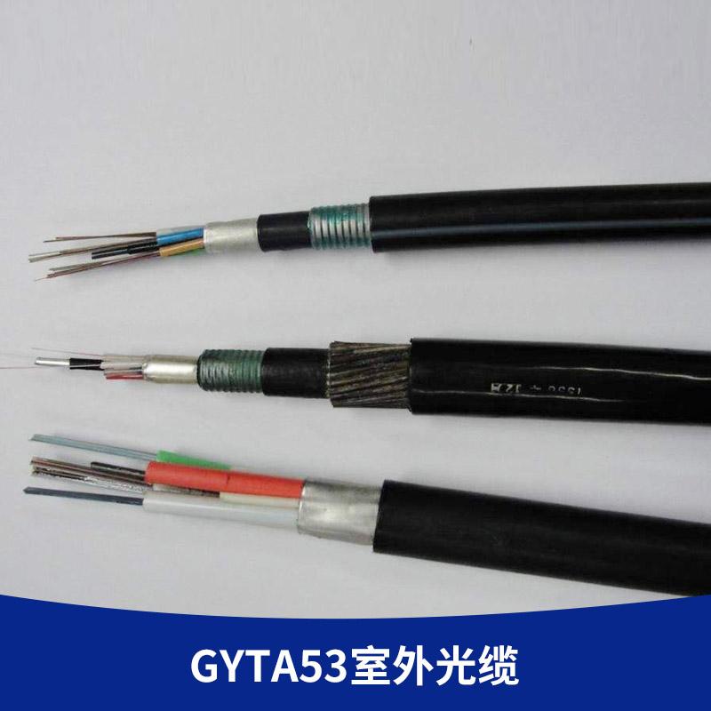 厂家直销 24芯地埋重铠光缆 双铠双护套直埋缆 GYTA53室外光缆