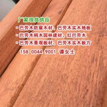 梢木价格、供巴劳木报价、红巴劳木、黄巴劳木、上海巴劳木批发