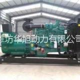 康明斯200KW柴油发电机组 康明斯发电机 康明斯柴油机 康明斯发动机