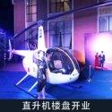 供应直升机楼盘开业图片