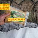 乌龟诱捕剂甲鱼诱捕剂图片