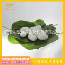 【苏州先蚕】先蚕提供白色蚕茧 白色蚕茧 黄色蚕茧 美容茧 举报 先蚕生物蚕茧图片