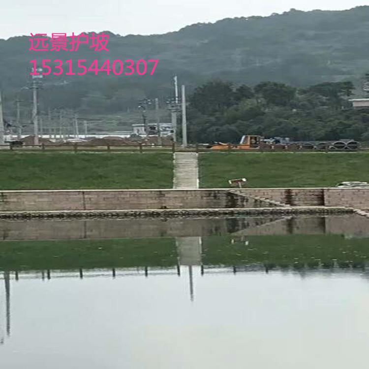 抗冲生态毯抗冲生物毯加筋防冲毯厂家直供南京河道护坡绿化