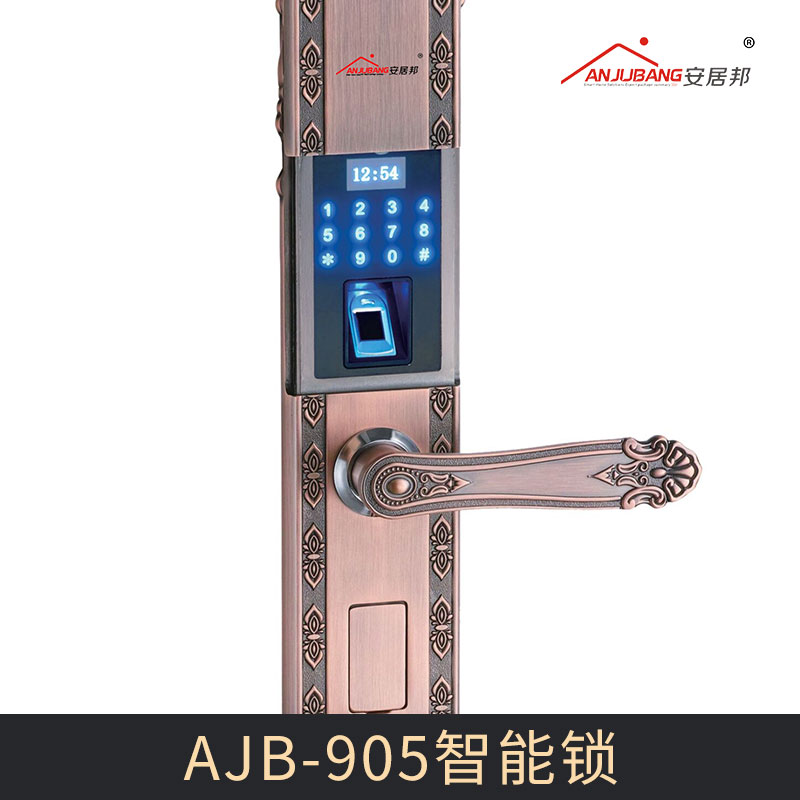 AJB-905别墅智能锁图片/AJB-905别墅智能锁样板图 (2)