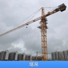供应塔吊 轻型重型塔吊起重设备 多种规格塔式起重机 欢迎致电咨询图片