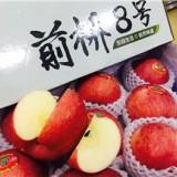 前桥8号苹果 国产苹果中的精品 送礼倍有面子