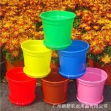 塑料花盆PP花盆  塑料花盆 塑料花盆生产厂家 彩色塑料花盆图片