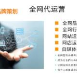 苏州品牌策划网络推广助力企业