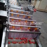 昊昌喷淋式果蔬清洗机