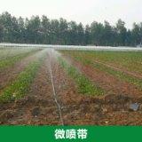 双城节水灌溉公司供应微喷带 优质田地喷灌带 环保节能灌溉设备
