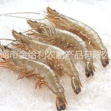 山东对虾海虾价格熟冻虾姑肉货源