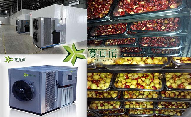 红枣热泵烘干设备,红枣烘干工艺教程