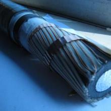 特种电缆|安徽特种电缆厂家|安徽特种电缆报价|BPYJVP电缆|安徽特种电缆生产厂家