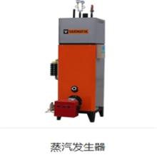 沃利玛燃气蒸汽发生器高效出气