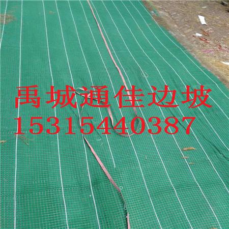 供应广东深圳抗冲生态绿化草毯  加筋防冲毯  绿化护坡环保