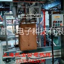防爆包装机20-50kg包装机械制造商